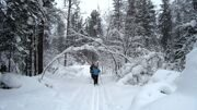 cross-country skiing1
